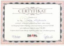 Szkolenie Exta Free firmy Zamel